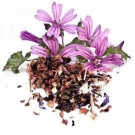 Malva – Flor