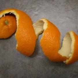Naranjo – Corteza